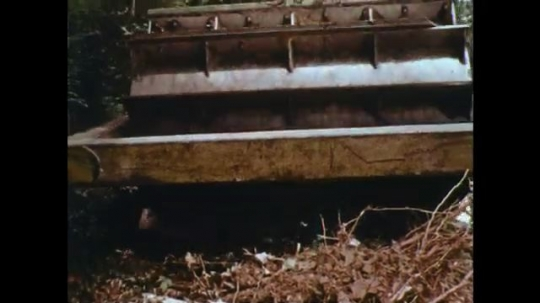 UNITED STATES: 1970s: vehicle flattens ground in forest.
