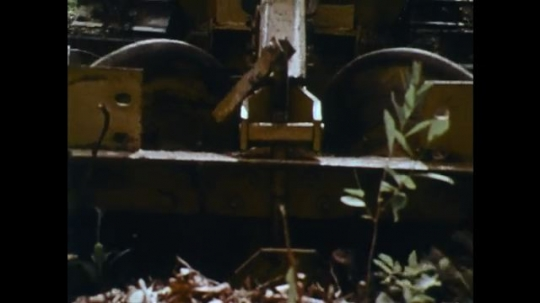 UNITED STATES: 1970s: machine clears pathway through forest floor.