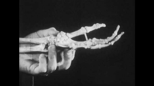 1950s: Man holds model skeleton hand at wrist. X-ray of hand clenching and unclenching, x-ray hand holds glass bottle. X-ray hand passes glass bottle. Man passes glass bottle.